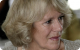 Prince Charles' wife: the Duchess of Cornwall
